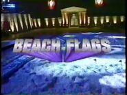 Beach Flags Fall 2000