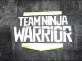 Team Ninja Warrior 2