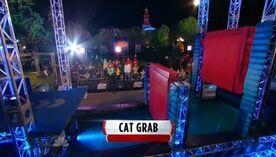 ANW6 Cat Grab