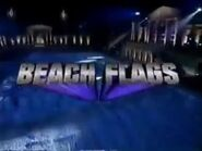 Beach Flags 2002