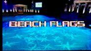 Beach Flags 2005
