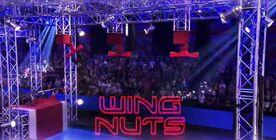 NWUK5 Wing Nuts