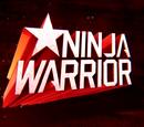 Ninja Warrior Sweden 2