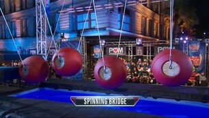ANW9 Spinning Bridge