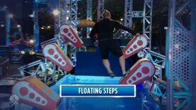 ANW8 Floating Steps