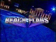 Beach Flags 2001