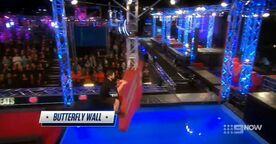 AusNW3 Butterfly Wall