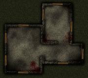 SAS Map