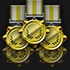 Gold Champion V