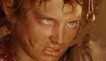 Frodo and ring