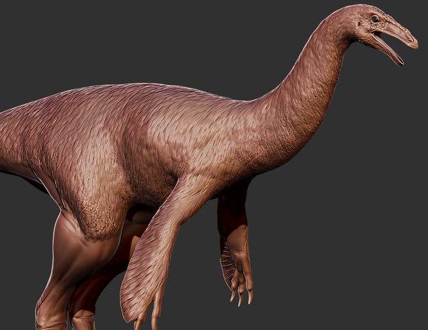 File:Ornithomimid model WIP.jpg
