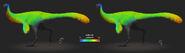 Ornitho feather lenght diagram03