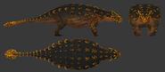 Ankylosaurus male