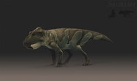 Leptoceratops female concept