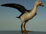 DePalma's Ornithuran
