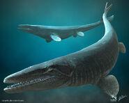 Mosasaurus hoffmanni saurian by tyranttr-daw08wb