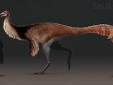 Ornithomimid