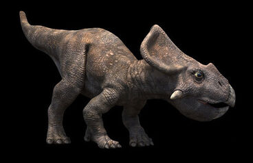 Protoceratops rg