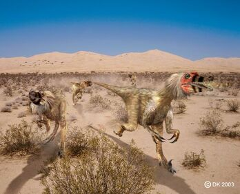 Velociraptor1