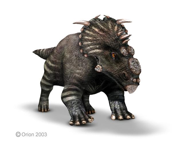 Pachyrhinosaurus | Sau...
