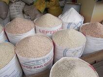 Observatoire du riz odr reference