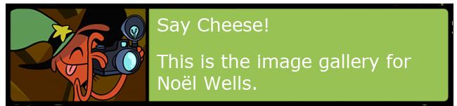 Noël Wells Banner