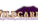 Wildcards: Nightlinger's Traveling Carnival of the Extraordinary