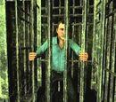 Running Cage