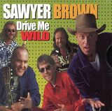 Drive Me Wild (song)