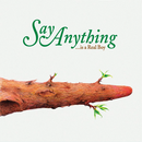 Say Anything Is a Real Boy