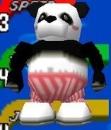 Mr. Panda