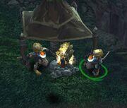 Pic campfire