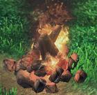 Picture Campfire1