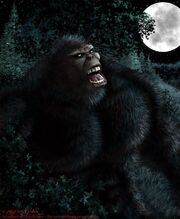 Night Scream Sasquatch 6 -2- (2)