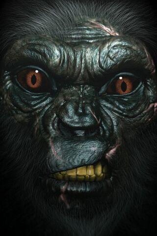File:Neanderthal front.jpg