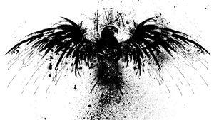 Raven pic 2