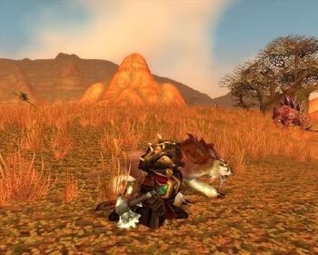 Torakk hunting