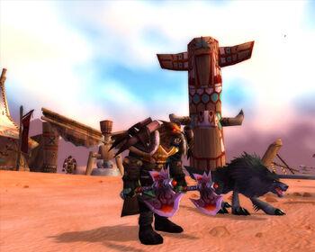Torakk's battle gear