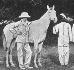Churchill als Polospieler