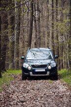 Auto auf Waldweg