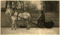 Kutscher mit Pferd
