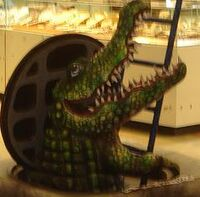 Krokodil im Kanal