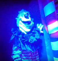 Horror-Clown 552