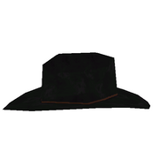 136 item CowboyHat