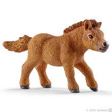 Mini Shetty Foal