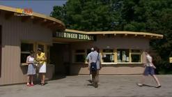 Zoo 521 2