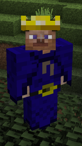 File:Wizard armor front w crown.png