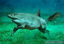 Shorse (underwater)