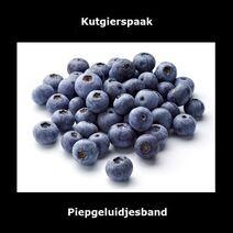 Kutgierspaak single cover