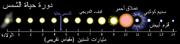 600px-Solar Life Cycle ar